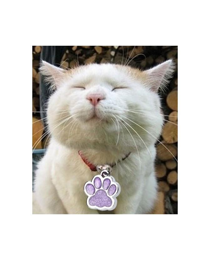 Colliers chat Bijou pour chat  3,00€