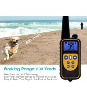 Colliers GPS Colliers chien d'entrainement à distance  99,00€