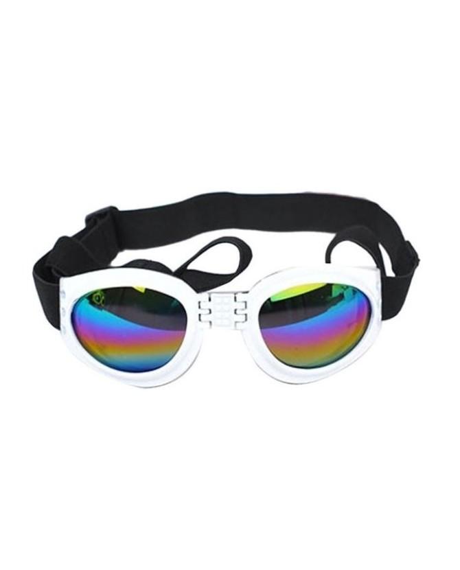 Accessoires de mode Lunette de soleil pour chien  9,00€