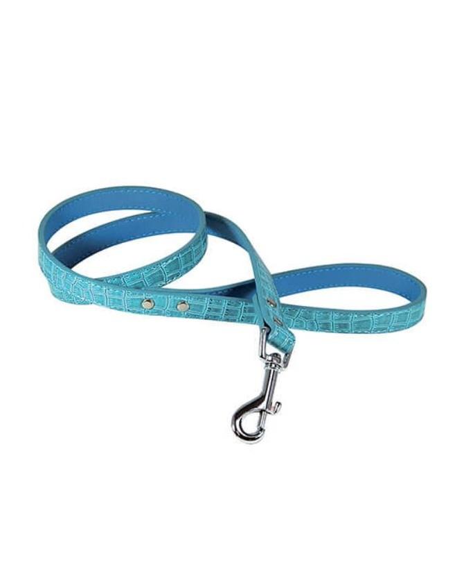 Laisses de promenade chien ou chiot Laisse Celeste bleue pour chien VIVOG 12,00€