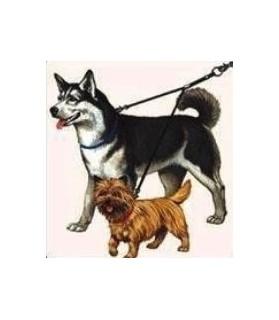 Laisses doubles accouple en nylon 2 chiens Doogy 8,00€