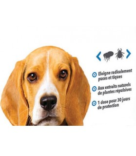 antiparasitaires canins Pipettes répulsif tiques et puces 10 à 25 kg Hery Laboratoire Héry 8,00€