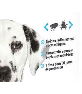 antiparasitaires canins Pipettes Répulsives puces et tiques pour chiot Hery Laboratoire Héry 7,00€