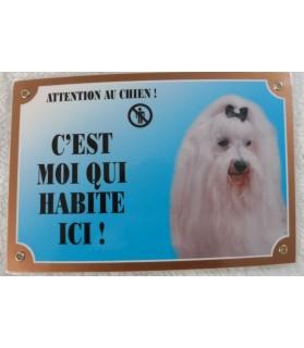 """Pancarte Bichon maltais """"attention au chien, c'est moi qui habite ici"""""""