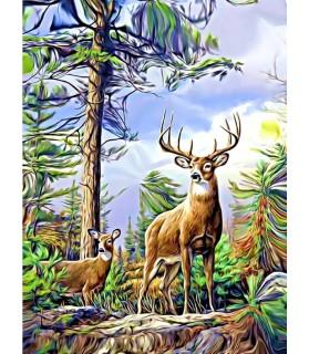 Poster animalier ChezAnilou Poster Biche et cerf dans les bois Chez Anilou 17,00€
