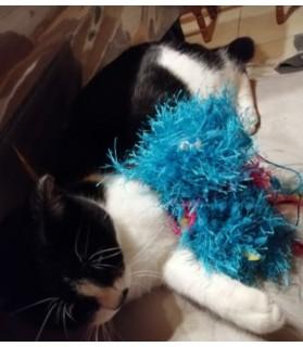 jouets chat jouet chat - le Coutchff Chez Anilou 12,00€