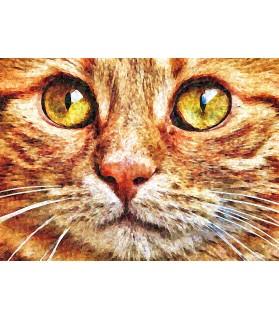 Peintures sur les chats Portrait Chat tigre aux beaux yeux Chez Anilou 15,00€