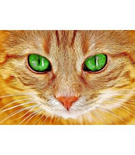 Peintures sur les chats Portrait Chat aux yeux verts Chez Anilou 15,00€