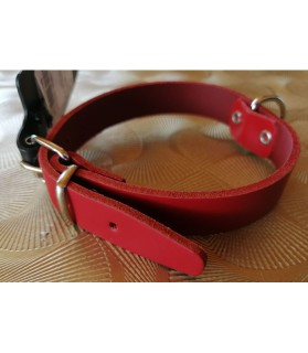 Colliers simili et cuir Collier chien Cuir Amazone Rouge  7,00€