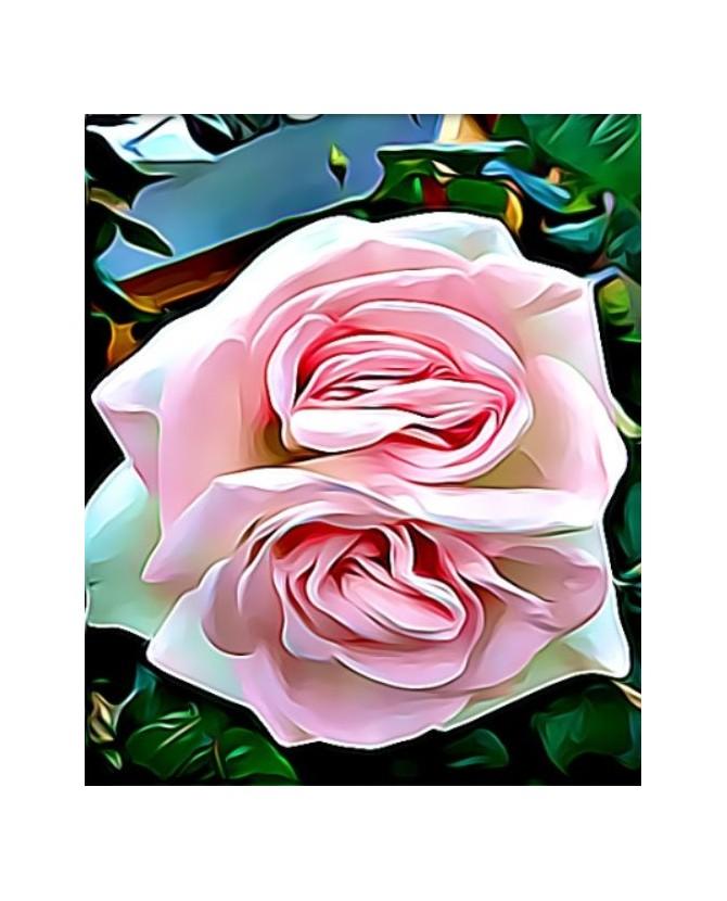 Peintures fleurs au naturel Peinture la double Rose rose Chez Anilou 15,00€