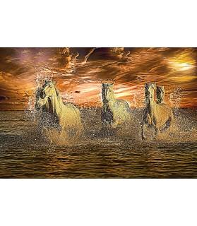 Poster animalier ChezAnilou Tableau les chevaux de feu Chez Anilou 15,00€