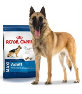 Royal Canin Maxi Adulte -...