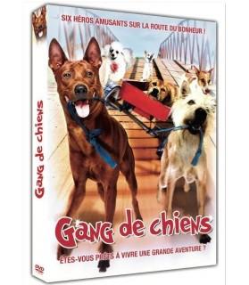 Des films avec des animaux DVD - DOG la folle aventure  5,00€