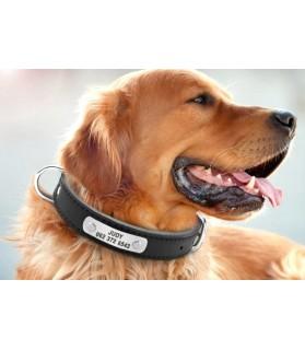 Colliers simili et cuir Collier chien en cuir avec plaque et double attaches Chez Anilou 14,00€