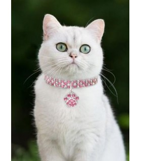 Colliers chat Collier chat strass rose et blanc  11,00€