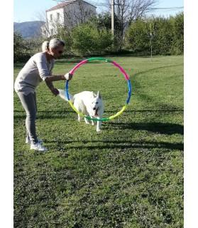 Agility Cerceau d'agility pour chien Chez Anilou 15,00€
