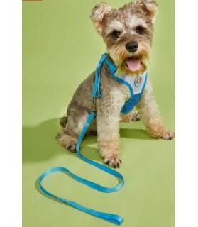 Harnais chic Harnais gilet kiki pour petit chien Mutli-marques 9,00€