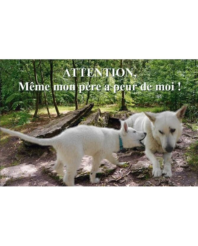 Berger blanc suisse Pancarte chien de garde 3PB Chez Anilou 15,00€