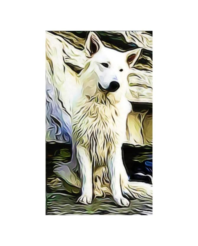 Tableaux berger blanc suisse Peinture sur le thème du berger blanc suisse Chez Anilou 15,00€