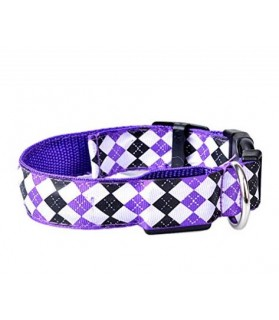 Colliers LED Collier chien Led mauve Lazzykit  11,00 €