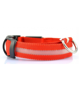 Colliers LED Collier chien Led rouge  9,00€
