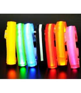 Colliers LED Collier chien Led BLEU  9,00€