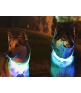 Colliers LED Collier chien Led BLEU  11,00€