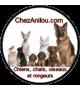 Chez Anilou